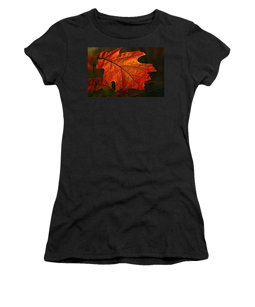 Fall Oak Leaf Leaves Orange Red Women's T-Shirt featuring the photograph Backlit Leaf by Shari Jardina