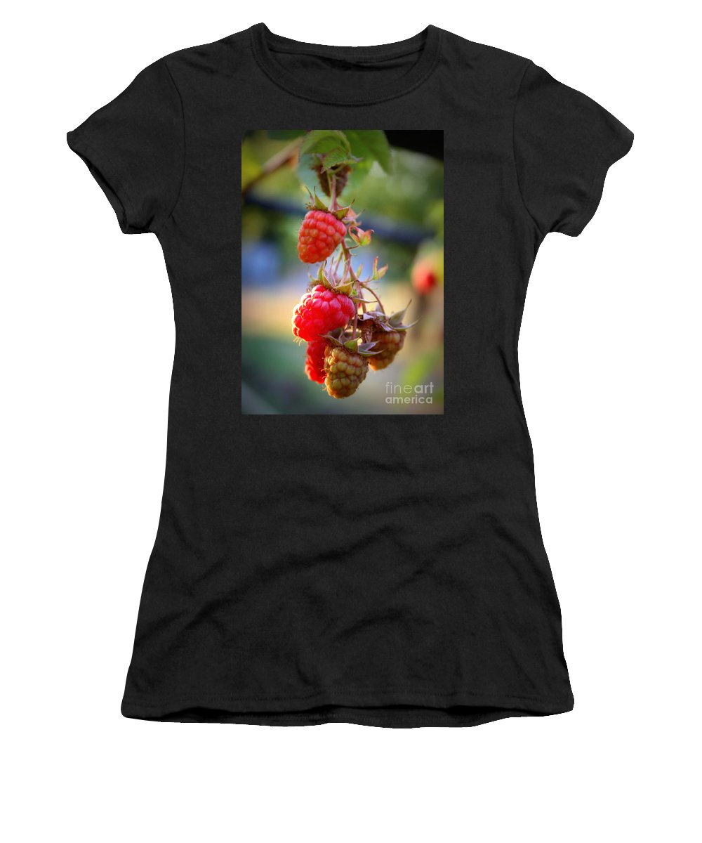 Food And Beverage Women's T-Shirt (Athletic Fit) featuring the photograph Backyard Garden Series - The Freshest Raspberries by Carol Groenen