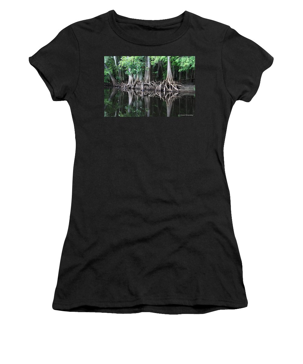 Bald Cypress Women's T-Shirt (Athletic Fit) featuring the photograph Bald Cypress Trees Along The Withlacoochee River by Barbara Bowen
