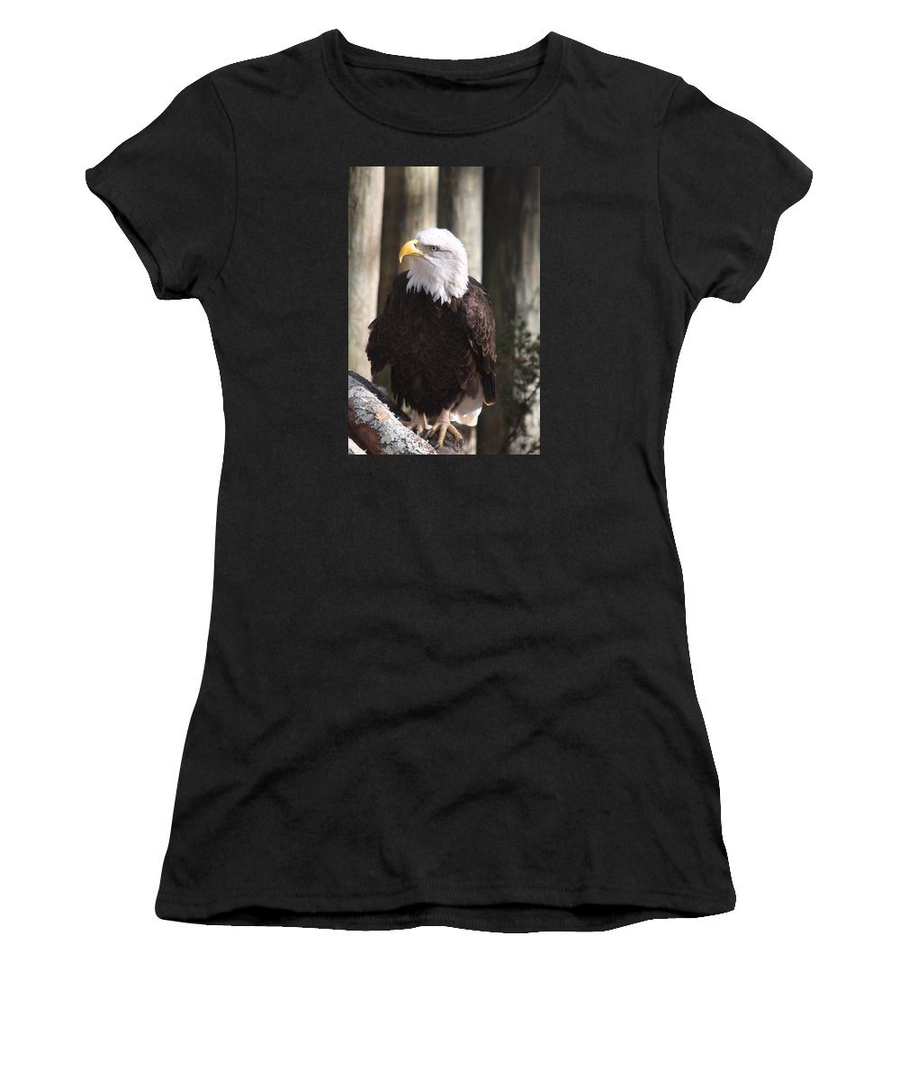 Eagle Women's T-Shirt (Athletic Fit) featuring the photograph Bald Eagle by Christiane Schulze Art And Photography