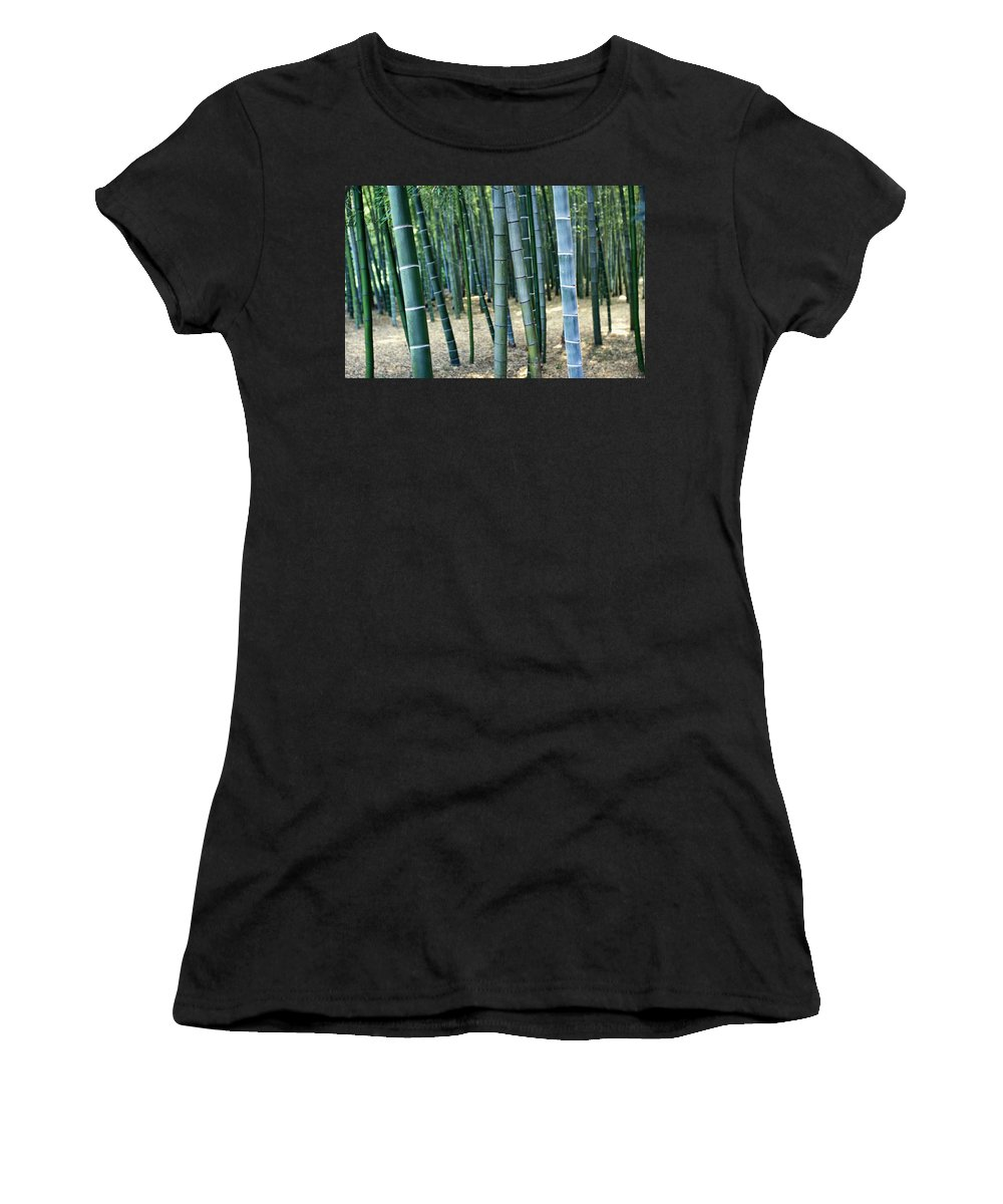 Trees Women's T-Shirt (Athletic Fit) featuring the photograph Bamboo Tree Forest, Close Up by Axiom Photographic