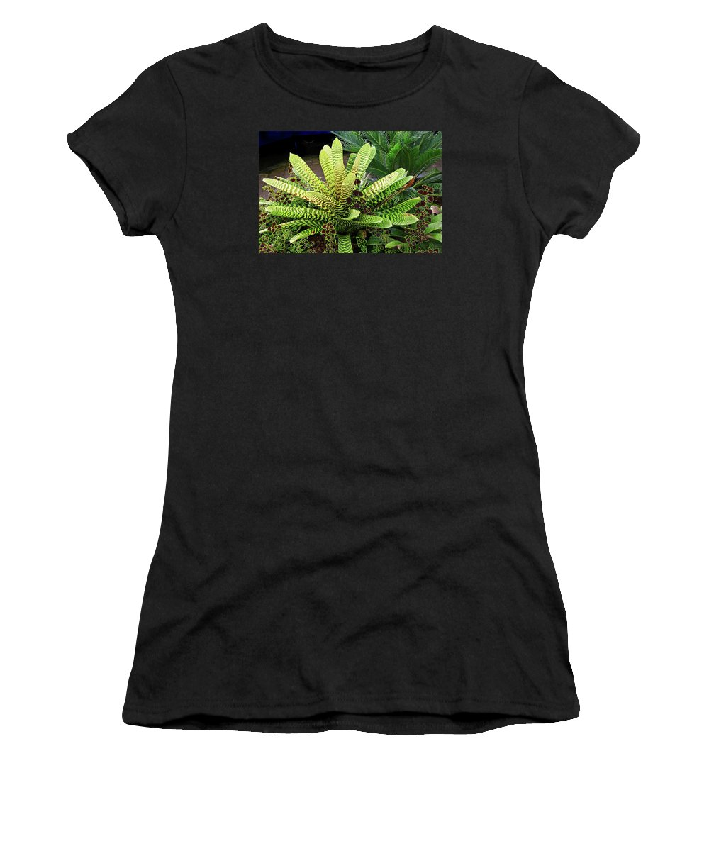 Bromeliad Women's T-Shirt (Athletic Fit) featuring the photograph Beautiful Lime Bromeliad by Nareeta Martin