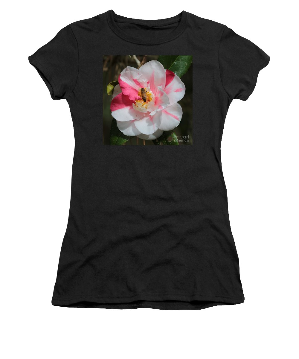 Camellia Women's T-Shirt featuring the photograph Bee On White And Pink Camellia by Carol Groenen
