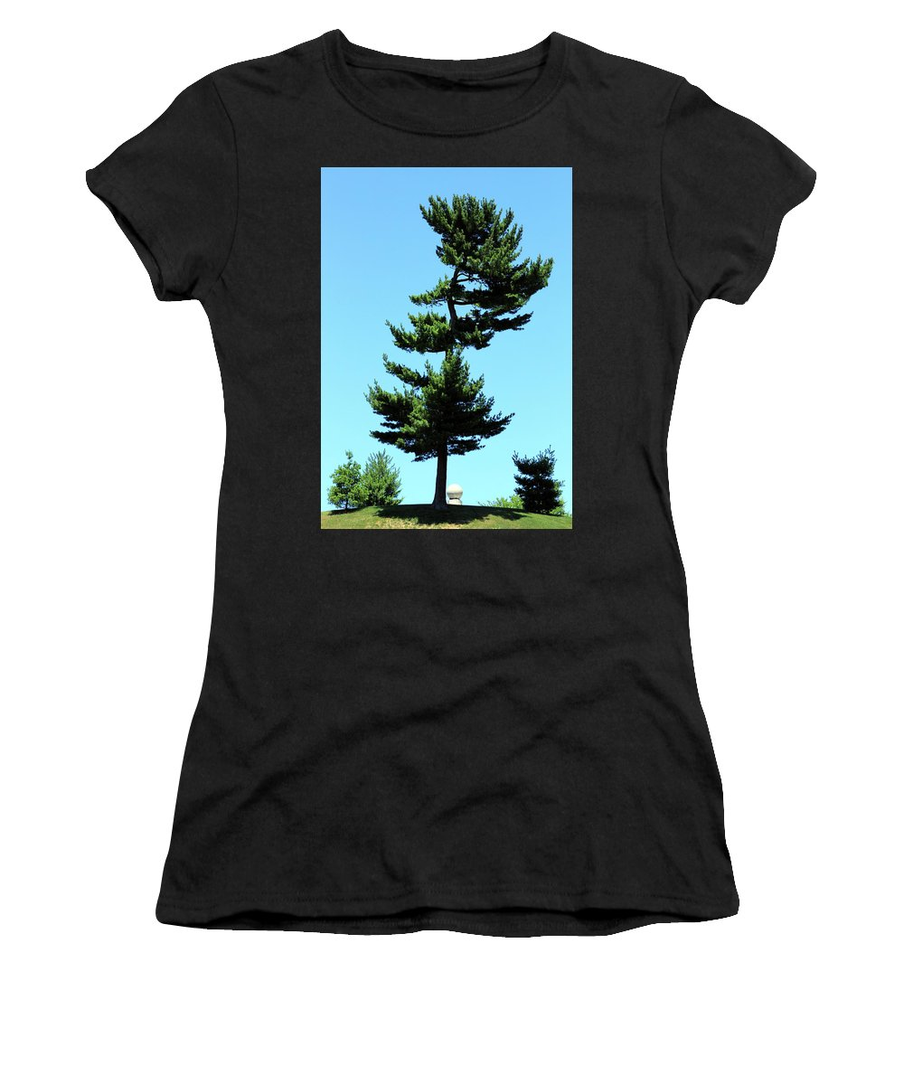 Robert Women's T-Shirt (Athletic Fit) featuring the photograph Beneath This Tree Lies Robert Edwin Peary by Cora Wandel