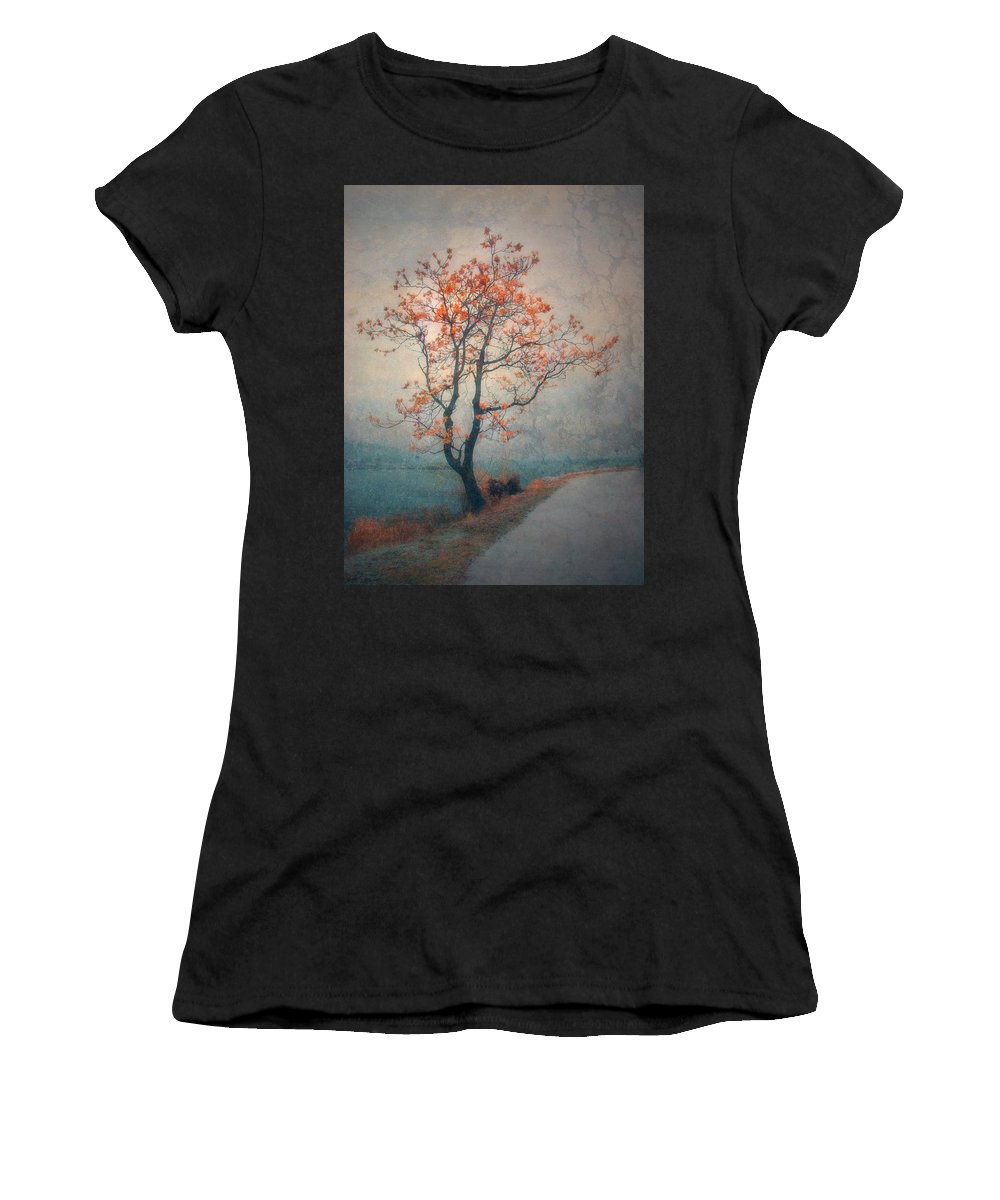 Seasons Women's T-Shirt (Athletic Fit) featuring the photograph Between Seasons by Tara Turner