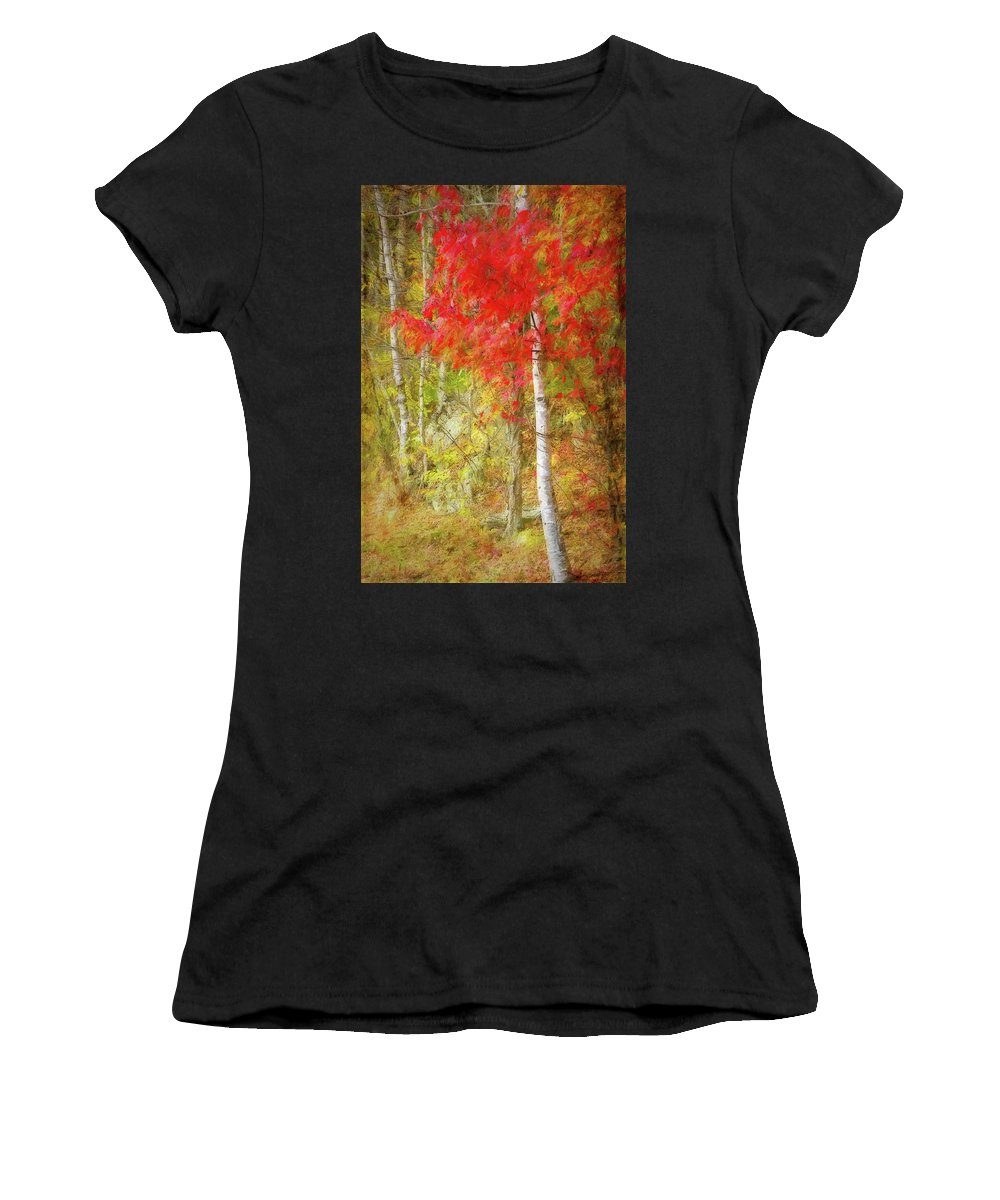 Photography Women's T-Shirt (Athletic Fit) featuring the digital art Birch Trees In Autumn by Terry Davis