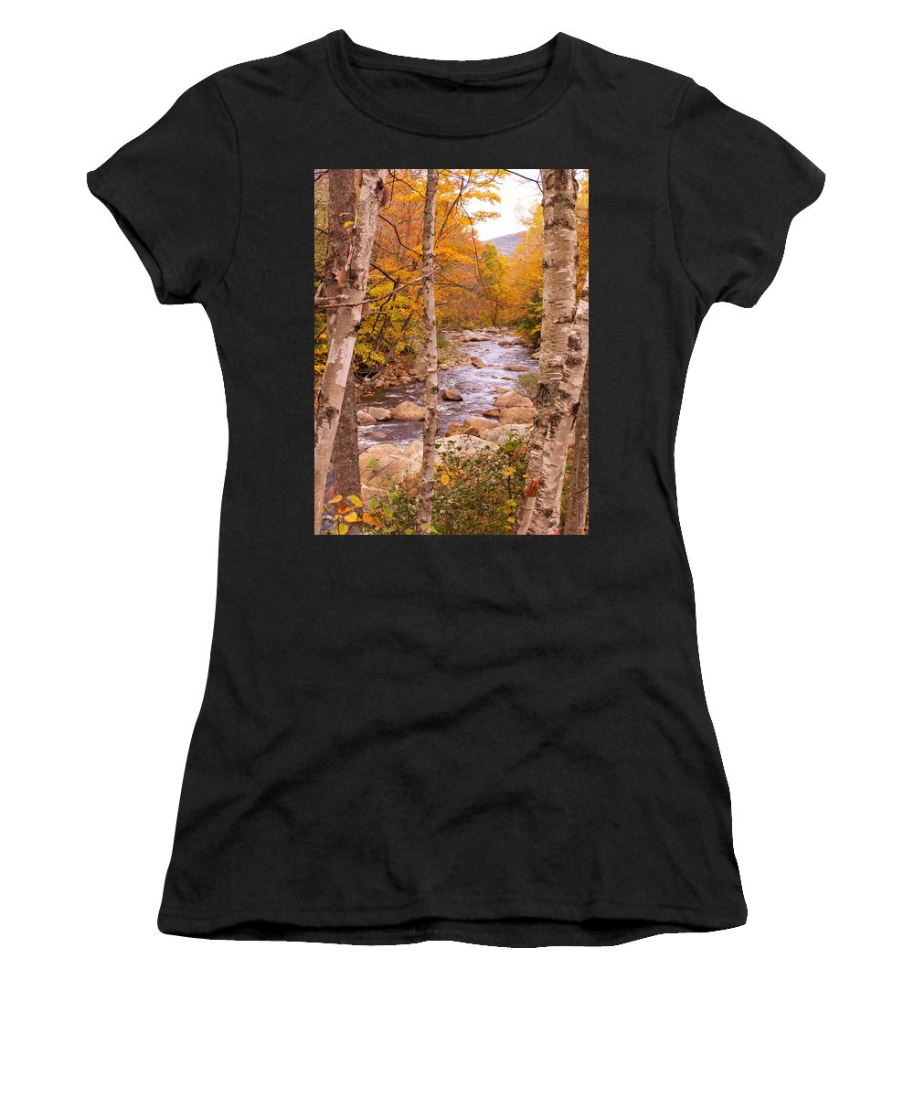 Landscape Women's T-Shirt (Athletic Fit) featuring the photograph Birches On The Kancamagus Highway by Nancy Griswold