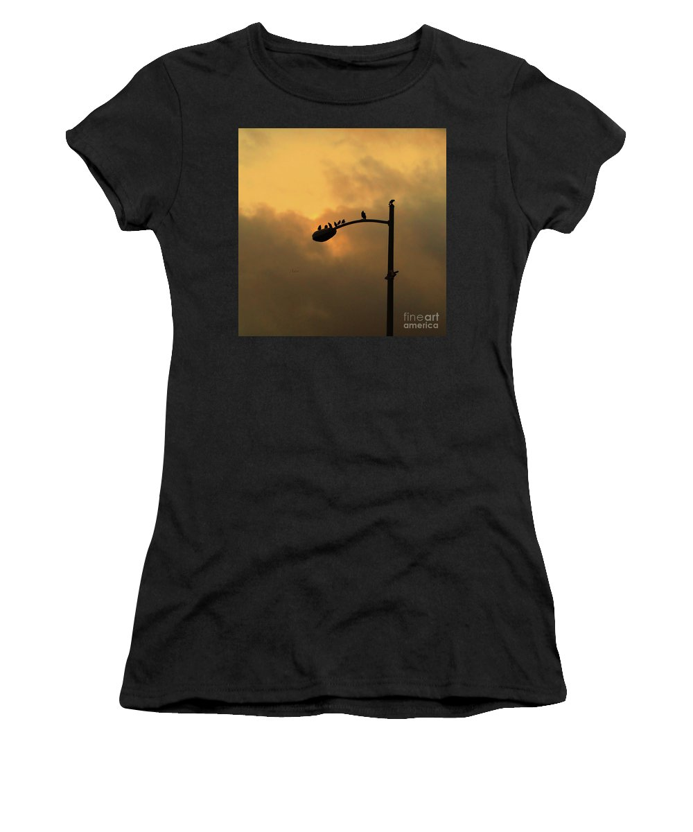 Birds Women's T-Shirt (Athletic Fit) featuring the photograph Birds On A Post Amber Light Square by Felipe Adan Lerma