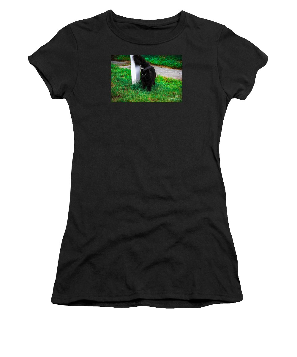 Cat Women's T-Shirt (Athletic Fit) featuring the photograph Black Cat Maine by Marina McLain