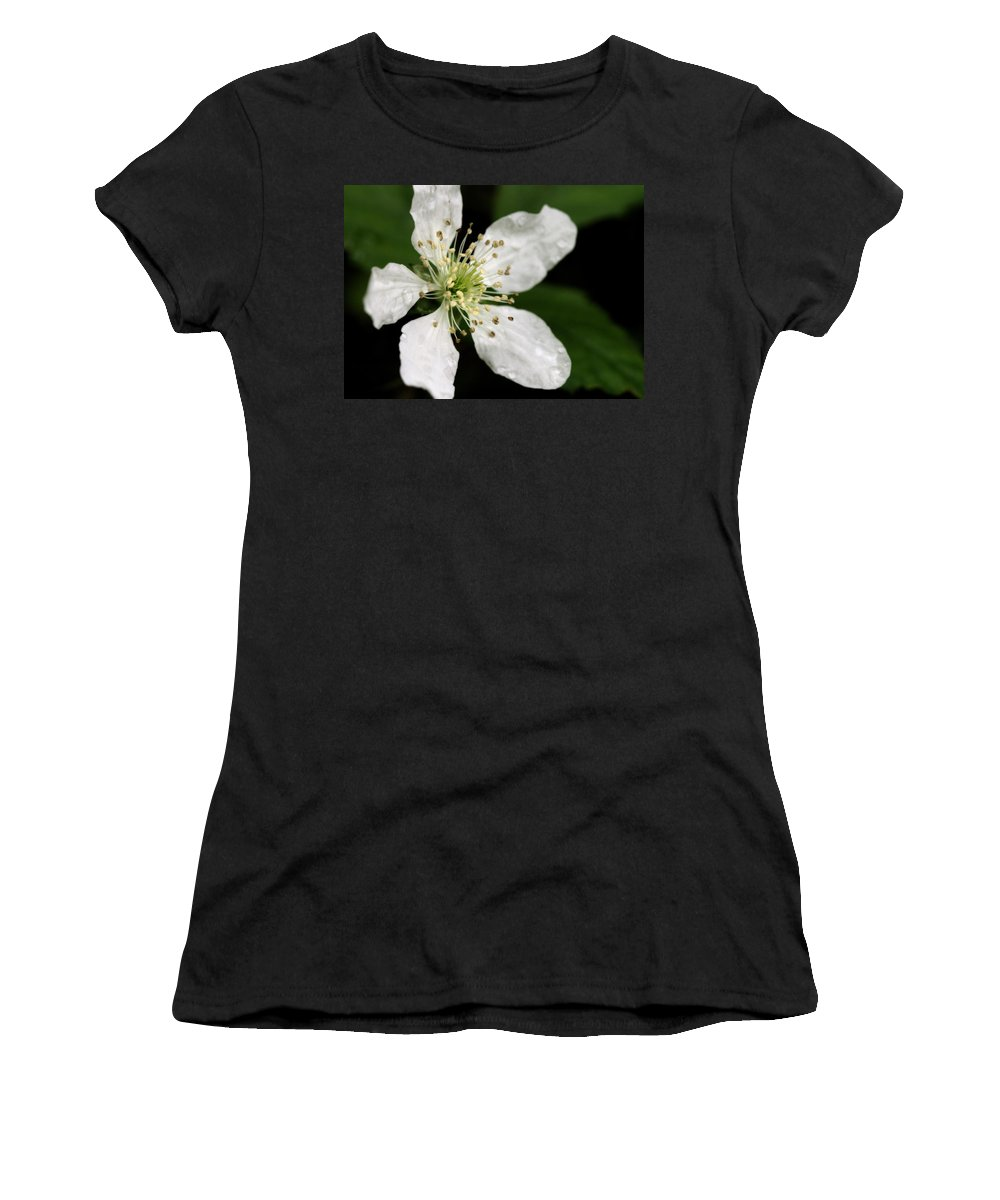 Flower Women's T-Shirt (Athletic Fit) featuring the photograph Blossom by Angela Rath