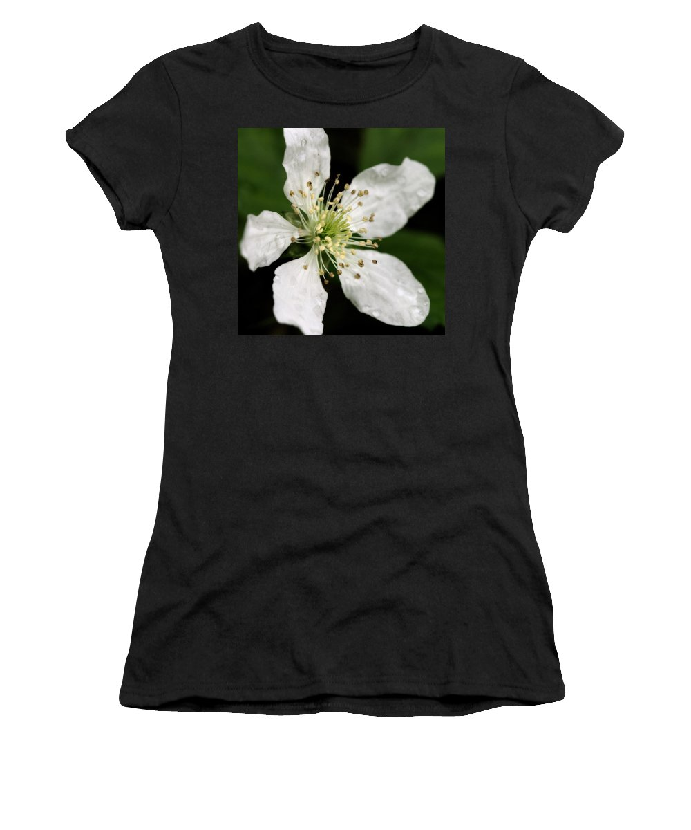 Flower Women's T-Shirt (Athletic Fit) featuring the photograph Blossom Square by Angela Rath