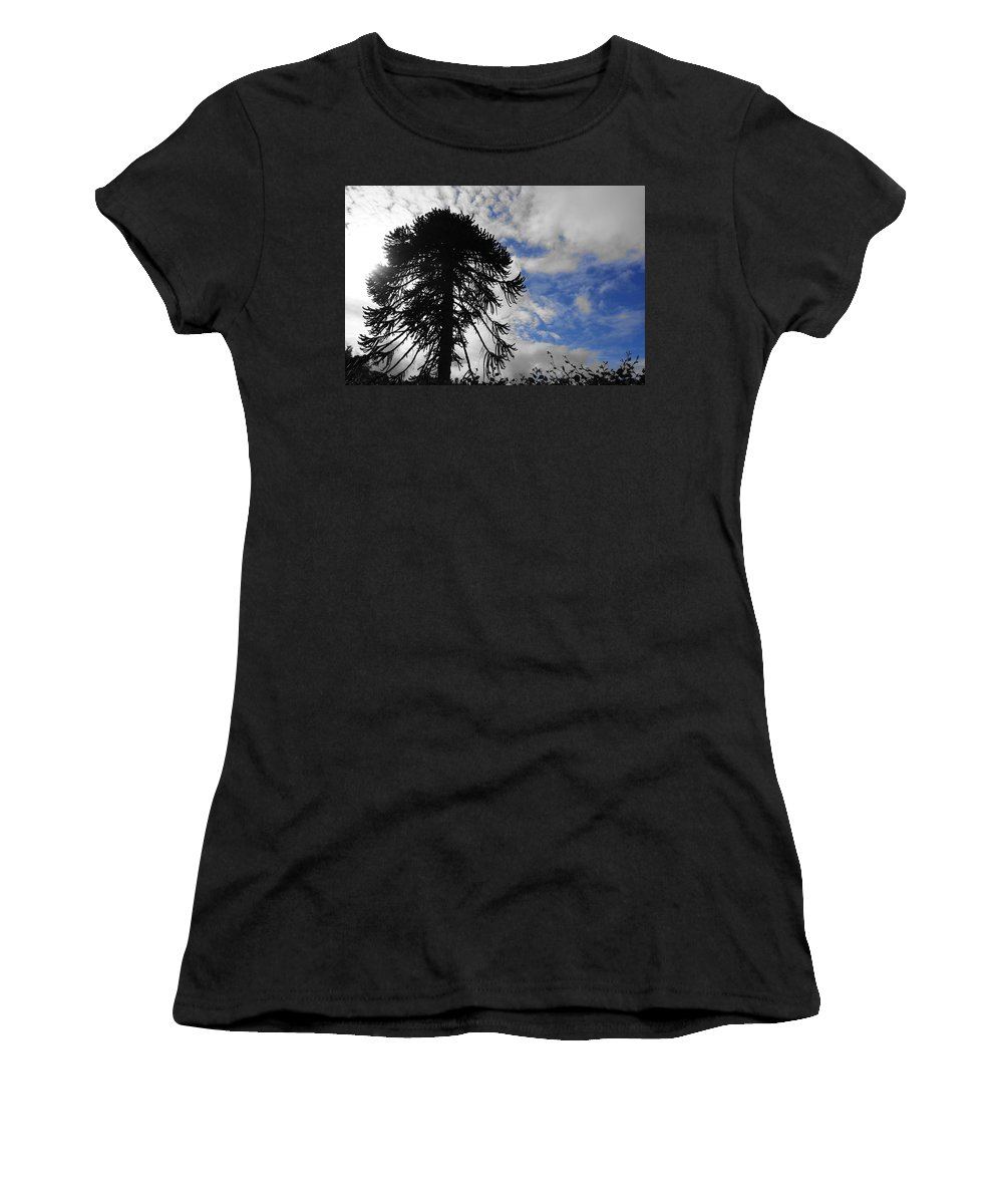 Tree Women's T-Shirt (Athletic Fit) featuring the photograph Blue Sky by Josh Parrish