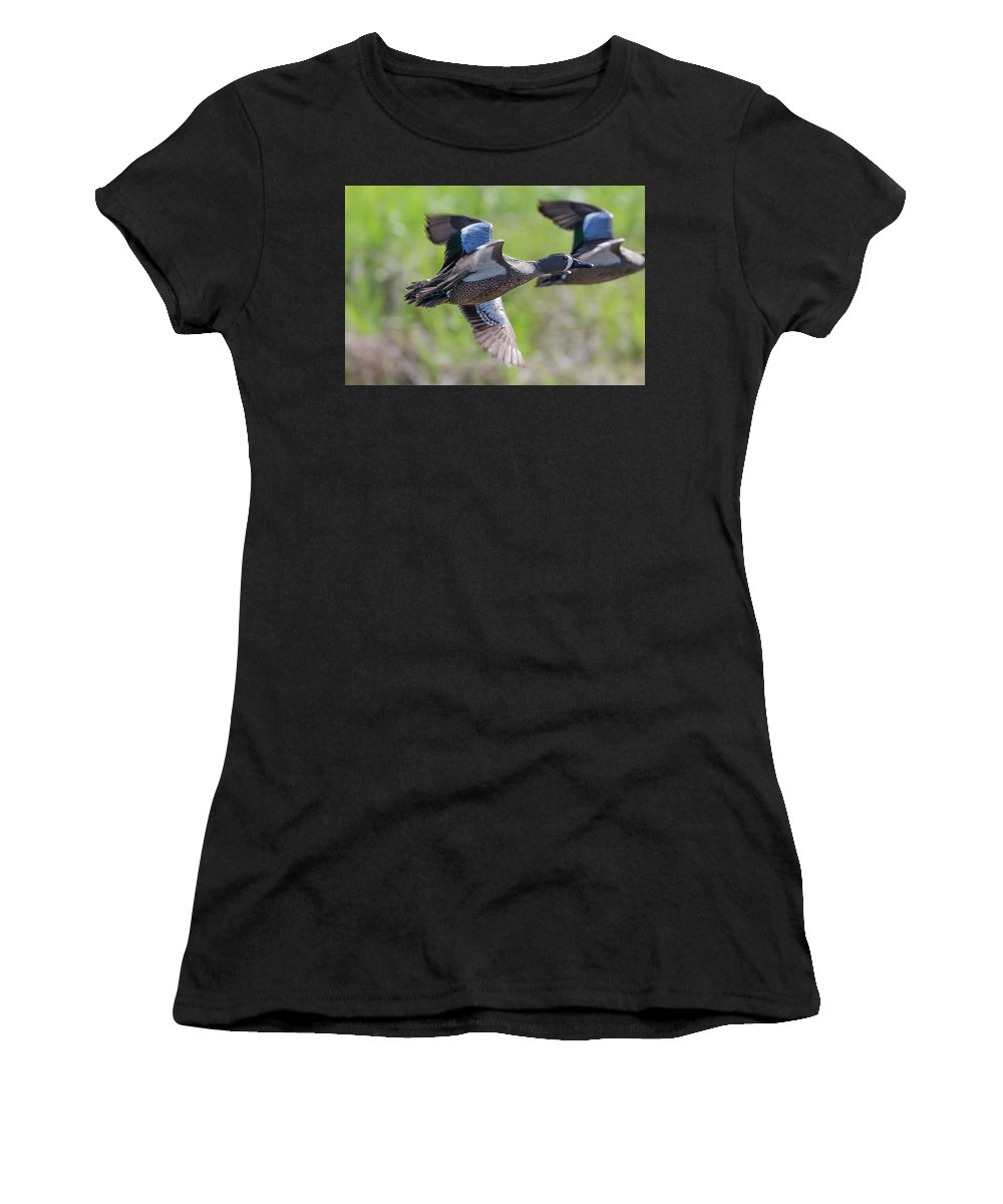 Ronnie Maum Women's T-Shirt (Athletic Fit) featuring the photograph Blue-winged Teal In Flight 3 by Ronnie Maum