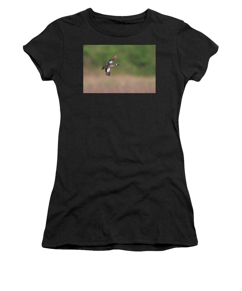 Ronnie Maum Women's T-Shirt (Athletic Fit) featuring the photograph Blue-winged Teal In Flight by Ronnie Maum