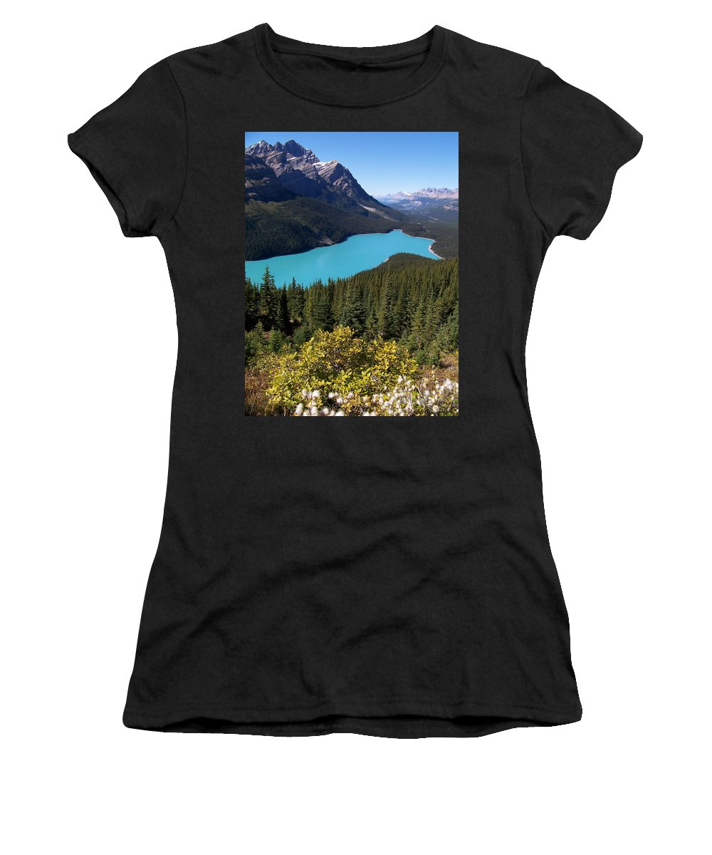 Scenic Women's T-Shirt (Athletic Fit) featuring the photograph Blue Wolf In The Valley by Greg Hammond