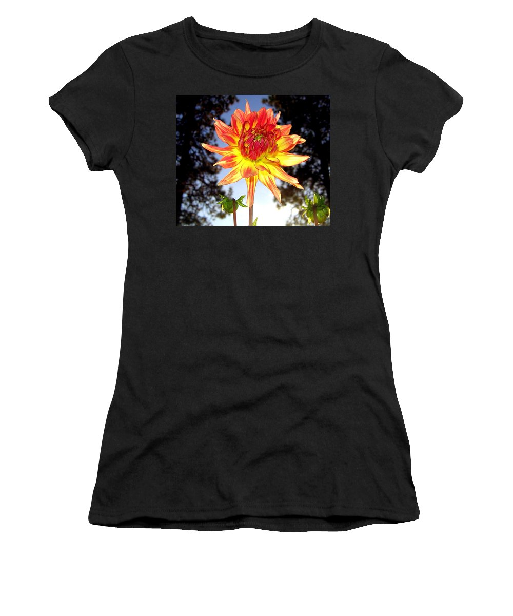 Dahlia Women's T-Shirt (Athletic Fit) featuring the photograph Bold And Beautiful by Will Borden