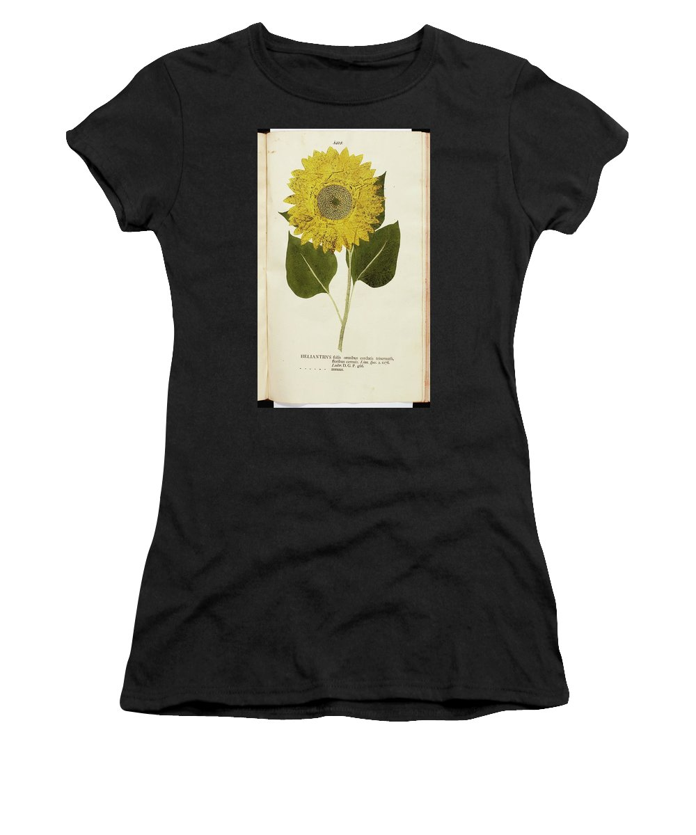 Kniphof Women's T-Shirt (Athletic Fit) featuring the painting Botanica In Originali Seu Herbarum by MotionAge Designs