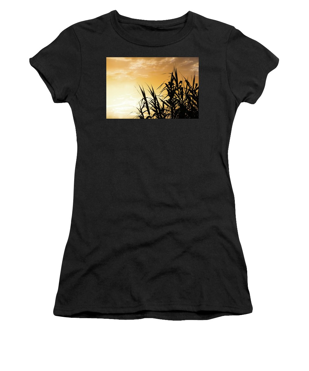 Cane Women's T-Shirt (Athletic Fit) featuring the photograph Break Of Dawn by SR Green