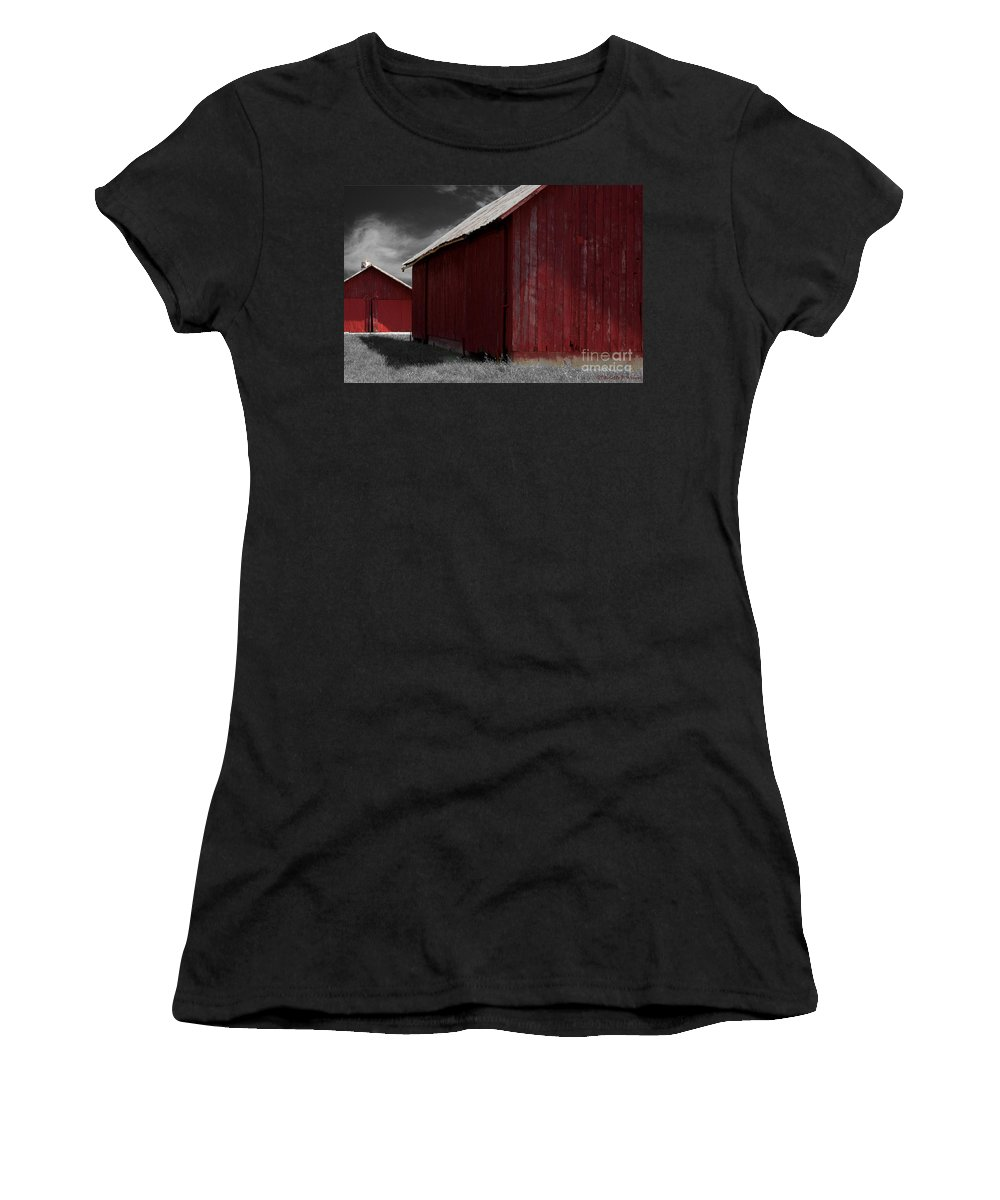 Farm Women's T-Shirt (Athletic Fit) featuring the photograph Brothers In Red by Paulette B Wright