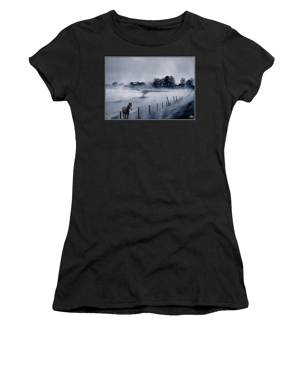 Mist Women's T-Shirt featuring the photograph Brown Horse On A Blue Farm by Wayne King