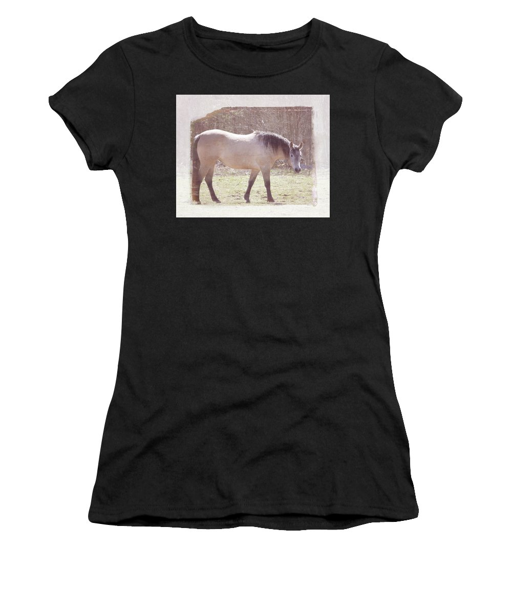 Horse Women's T-Shirt (Athletic Fit) featuring the photograph Buckskin Horse by Alanna Long