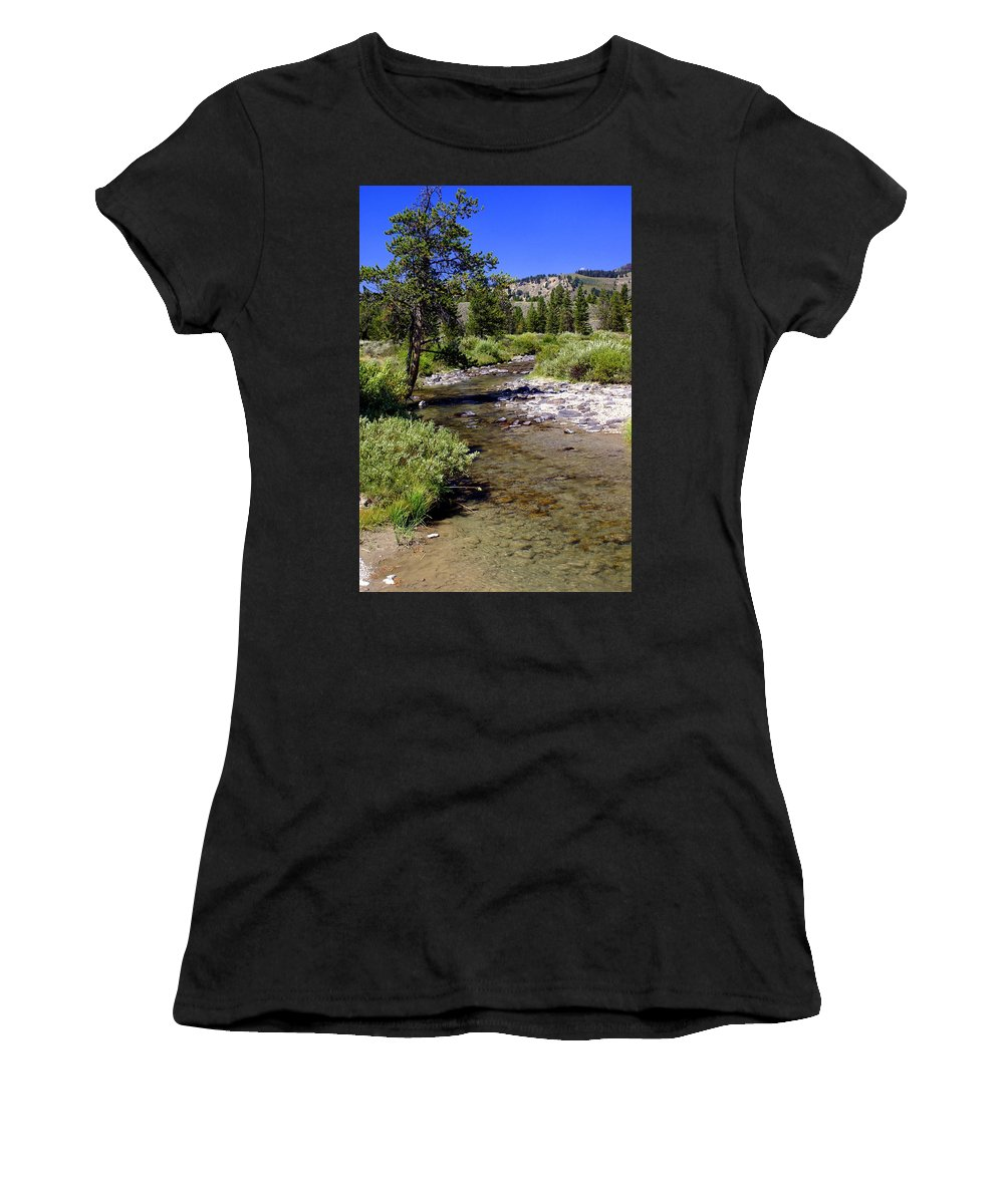 Montana Women's T-Shirt (Athletic Fit) featuring the photograph Buffalo Fork by Marty Koch