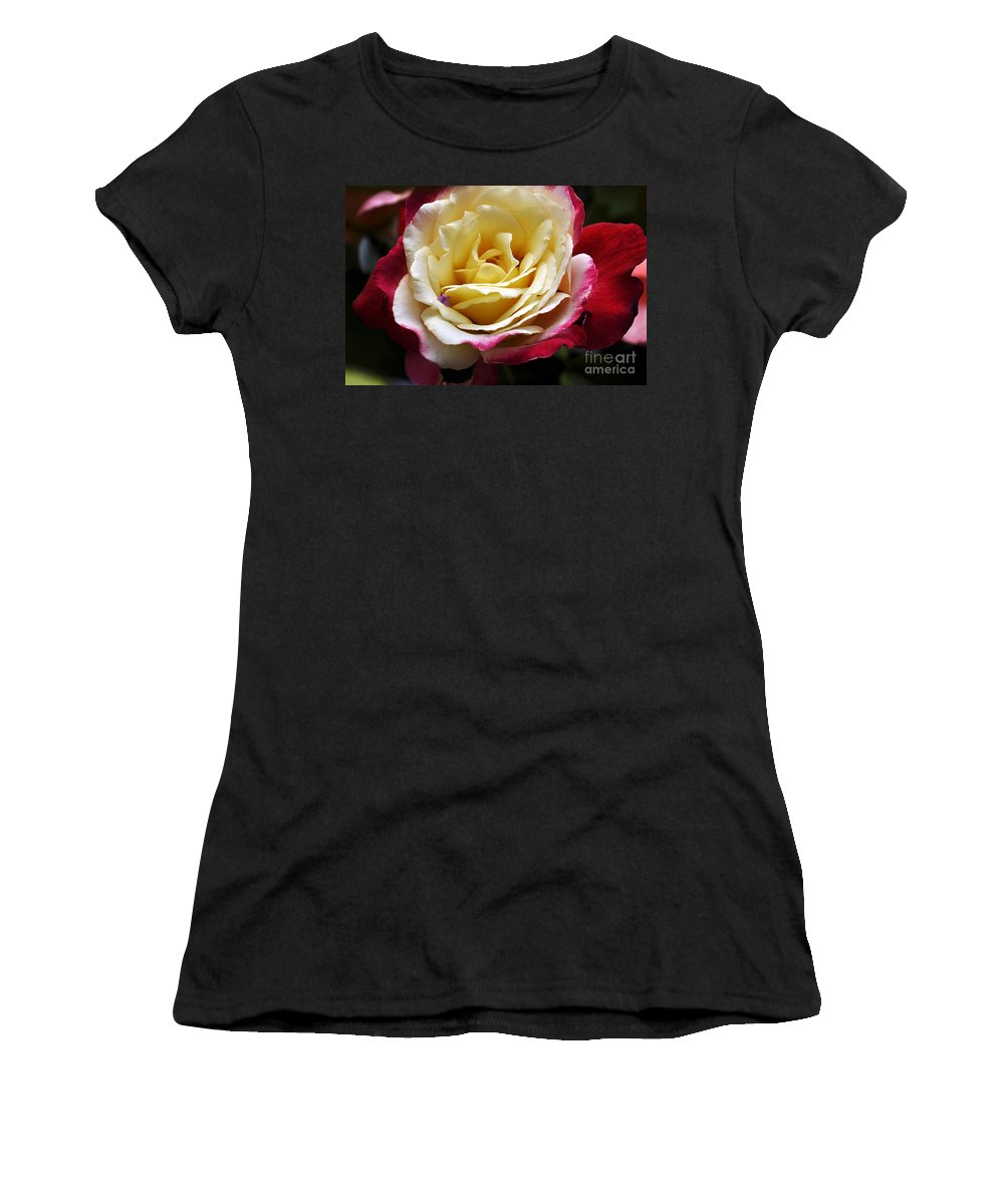 Clay Women's T-Shirt (Athletic Fit) featuring the photograph Burst Of Rose by Clayton Bruster