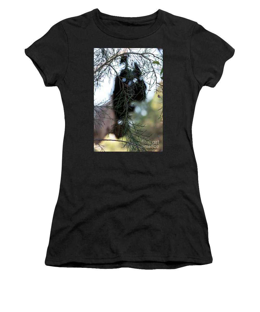 Nature Women's T-Shirt (Athletic Fit) featuring the photograph Bush Monster by Mikael Fahlesson