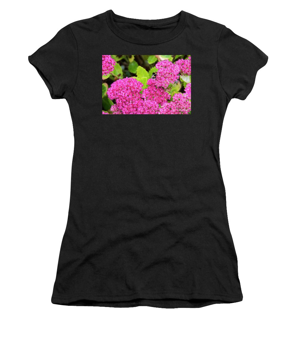 Cawdor Castle Women's T-Shirt featuring the photograph Busy Bee by Bob Phillips