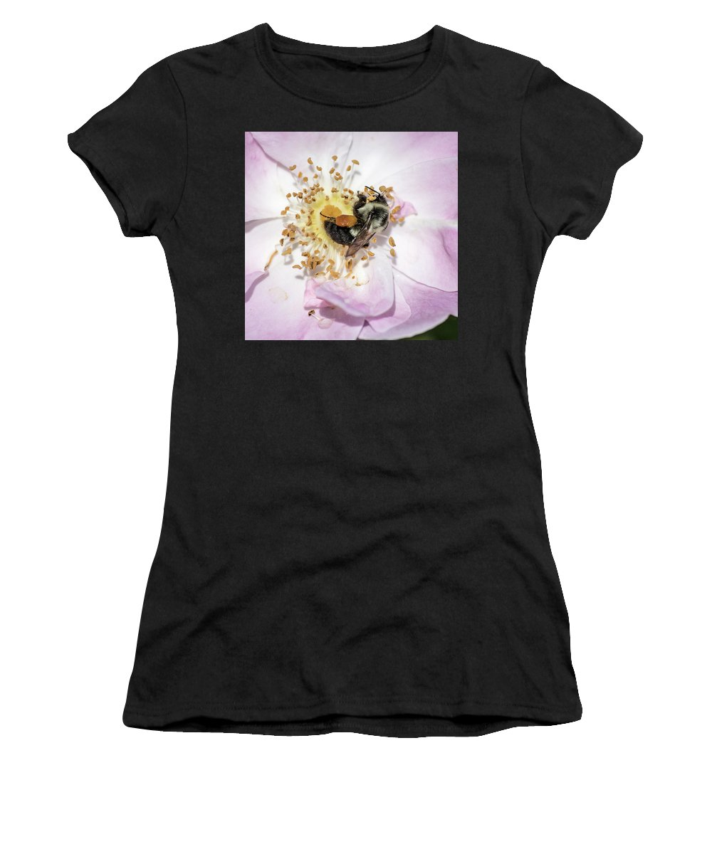 Bee Women's T-Shirt (Athletic Fit) featuring the photograph Busy Bee by George Fredericks
