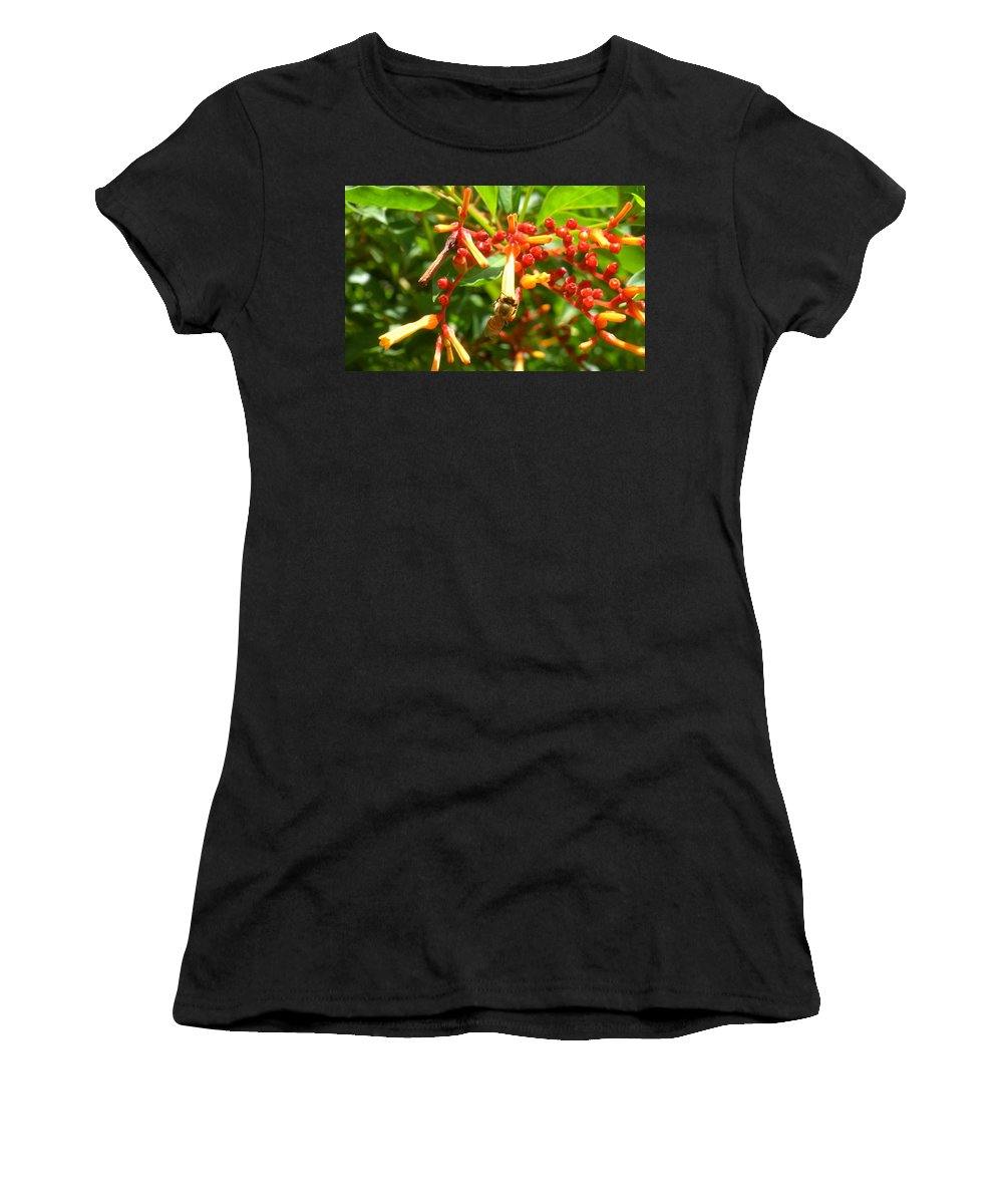 Bee Women's T-Shirt (Athletic Fit) featuring the photograph Busy Bee by Maria Bonnier-Perez