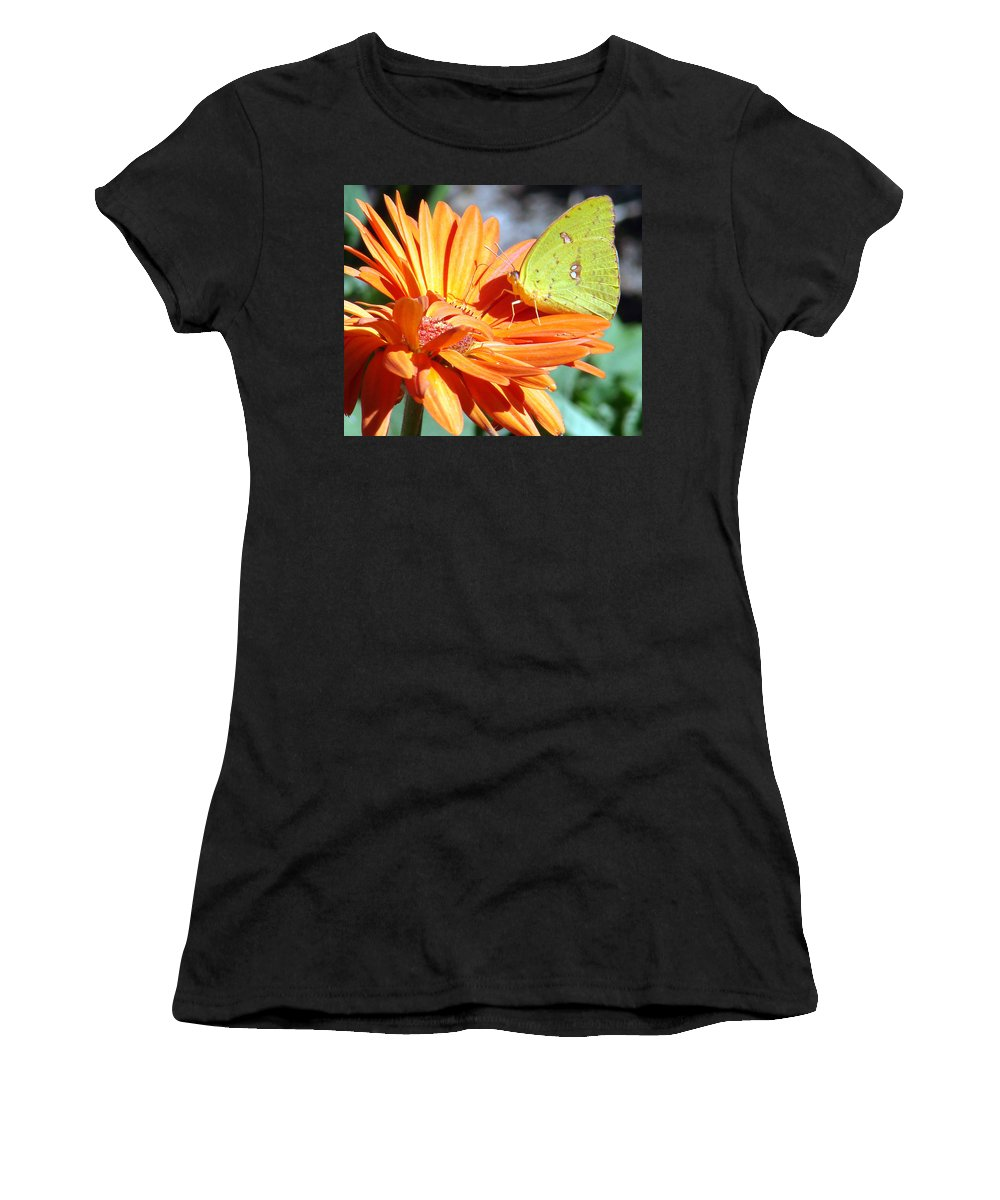 Butterflies Women's T-Shirt (Athletic Fit) featuring the photograph Butters by Mary Halpin