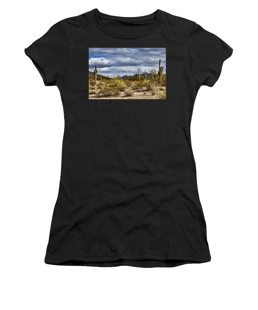 Cactus Women's T-Shirt (Athletic Fit) featuring the photograph Cactus Valley by Stanton Tubb