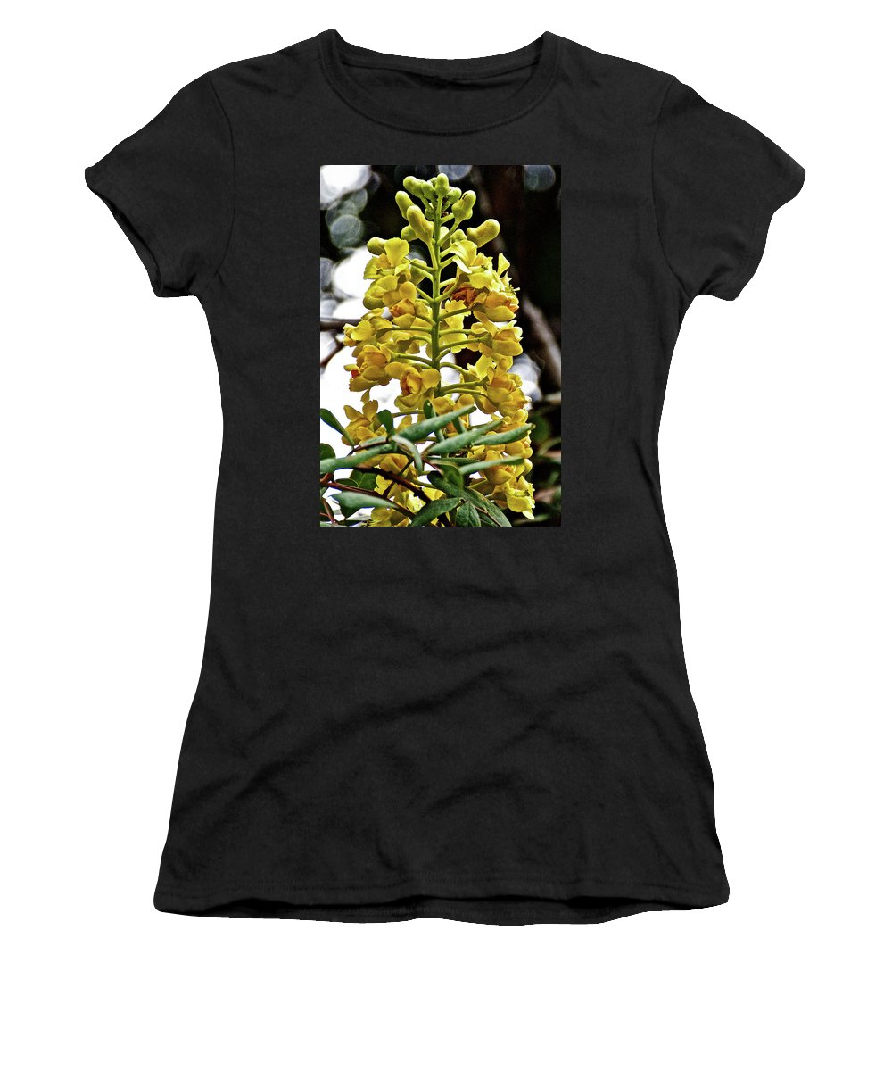 Caesalpinia Cacalaco In Huntington Gardens In San Marino Women's T-Shirt featuring the photograph Caesalpinia Cacalaco In Huntington Desert Gardens In San Marino-california by Ruth Hager
