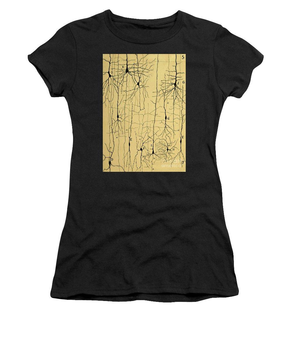 Biological Women's T-Shirts