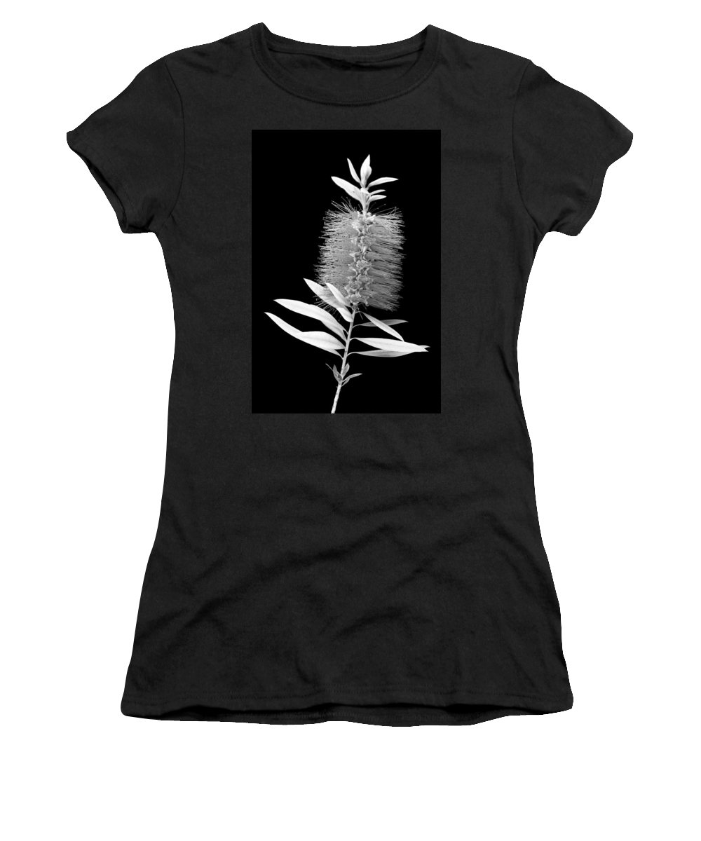 Bottlebrush Women's T-Shirt (Athletic Fit) featuring the photograph Callistemon Beauty 3 by Kelley King