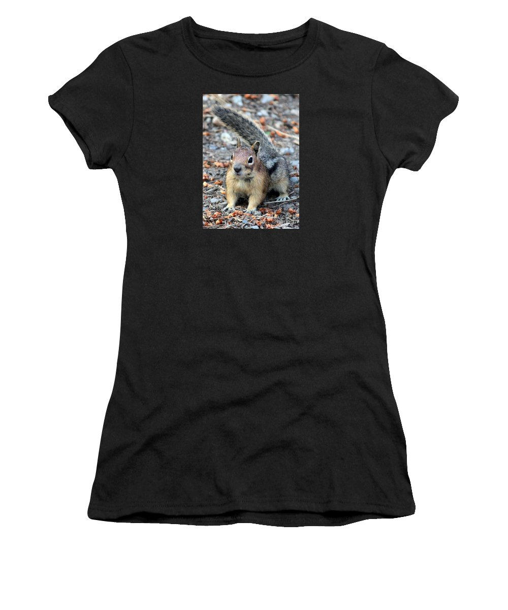 Chipmunk Women's T-Shirt (Athletic Fit) featuring the photograph Campground Chipmunk by Carol Groenen