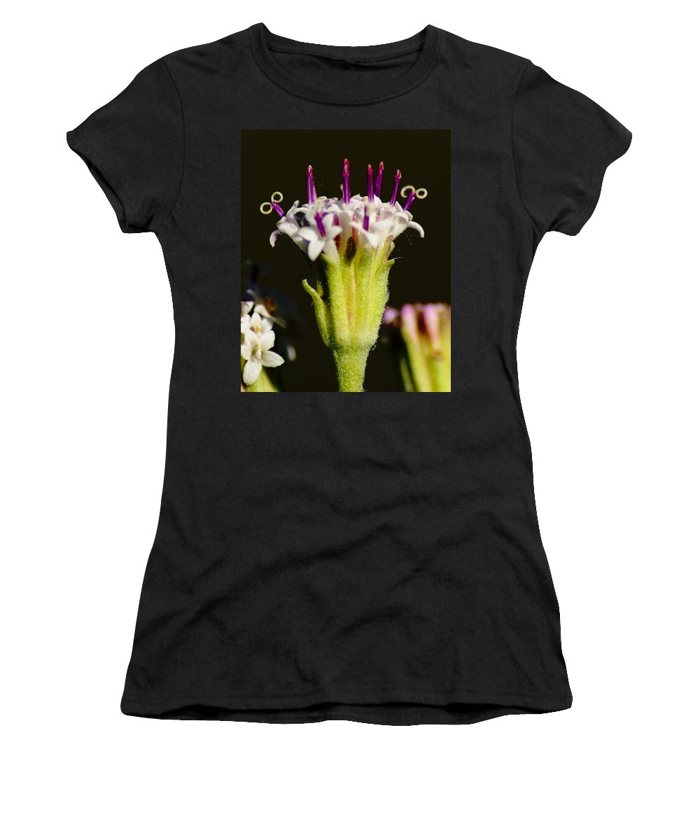 Flowers Women's T-Shirt featuring the photograph Candles On A Flower Cake by Ben Upham III