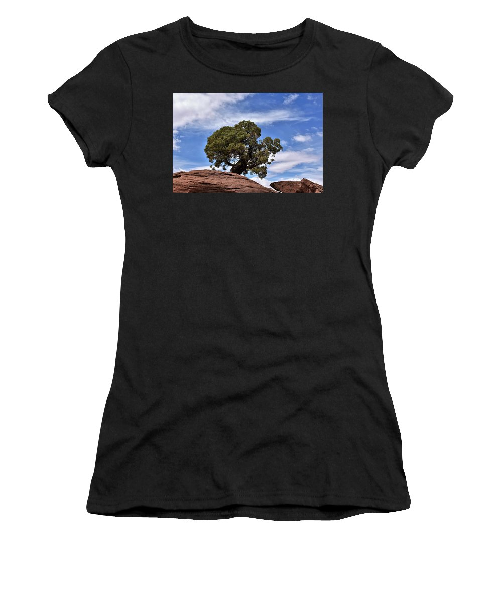 Canyonlands National Park Women's T-Shirt (Athletic Fit) featuring the photograph Canyonlands Tree by Flo McKinley