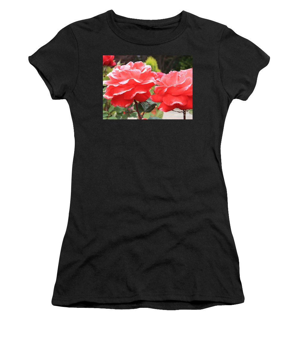 Carmel Mission Women's T-Shirt (Athletic Fit) featuring the photograph Carmel Mission Roses by Carol Groenen