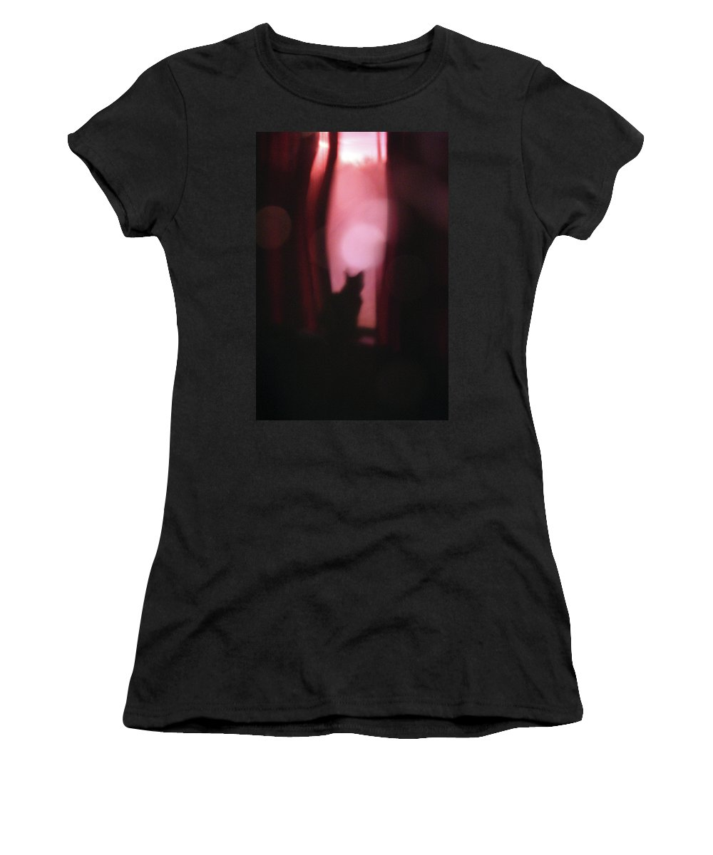 Felis Catus Women's T-Shirt featuring the photograph Cat In The Window by Alycia Christine