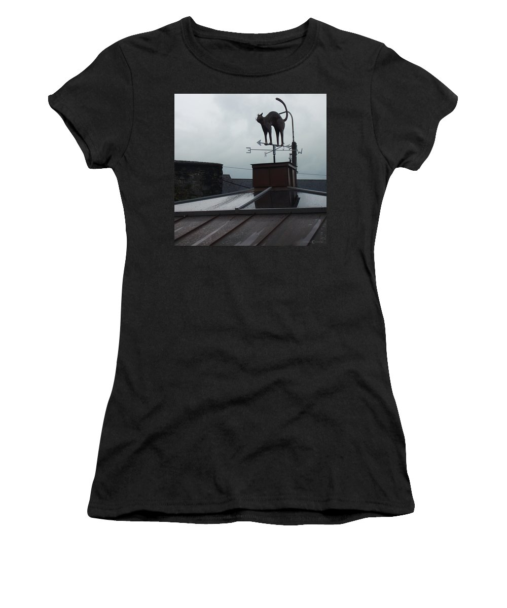 Cat Women's T-Shirt (Athletic Fit) featuring the photograph Cat On A Cool Tin Roof by Tim Nyberg