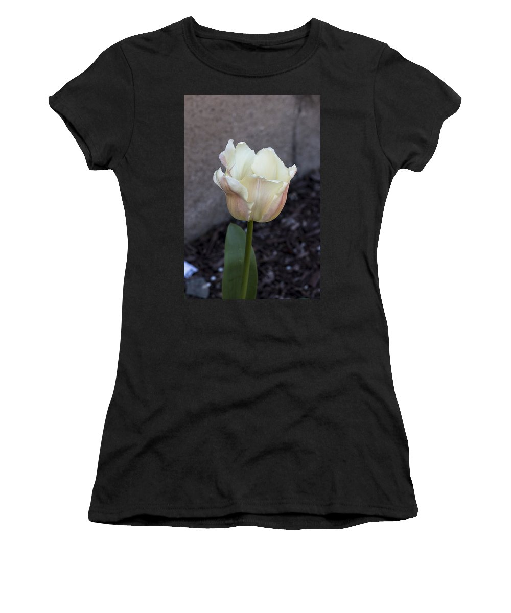 Tulip Women's T-Shirt featuring the photograph Chalky by Candalis Escudero
