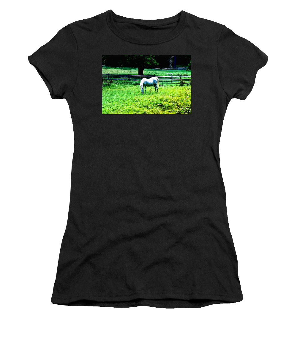 Philadelphia Women's T-Shirt (Athletic Fit) featuring the photograph Chestnut Hill Horse by Bill Cannon