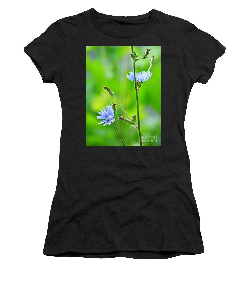 Cichorium Women's T-Shirts