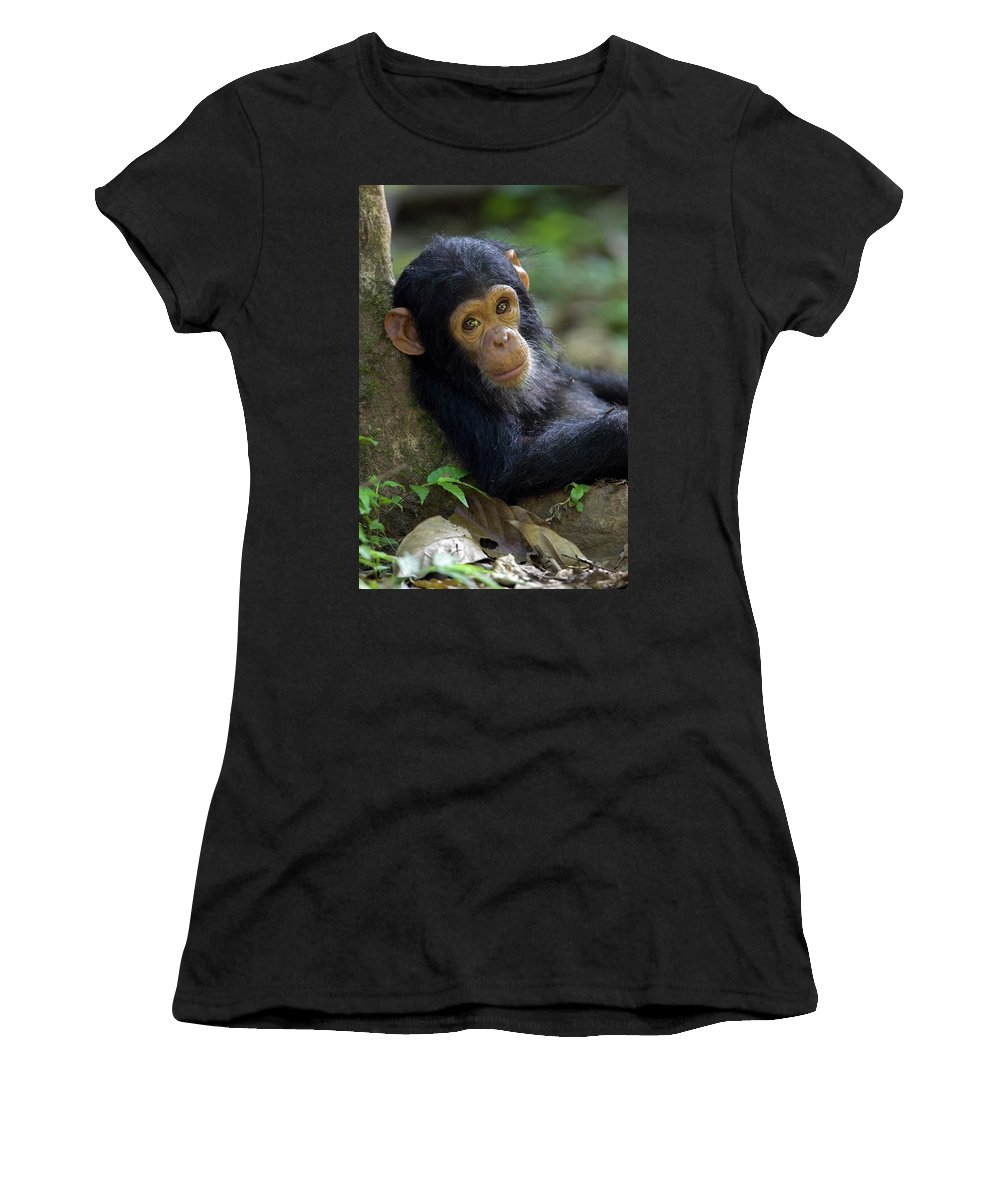 Mp Women's T-Shirt featuring the photograph Chimpanzee Pan Troglodytes Baby Leaning by Ingo Arndt