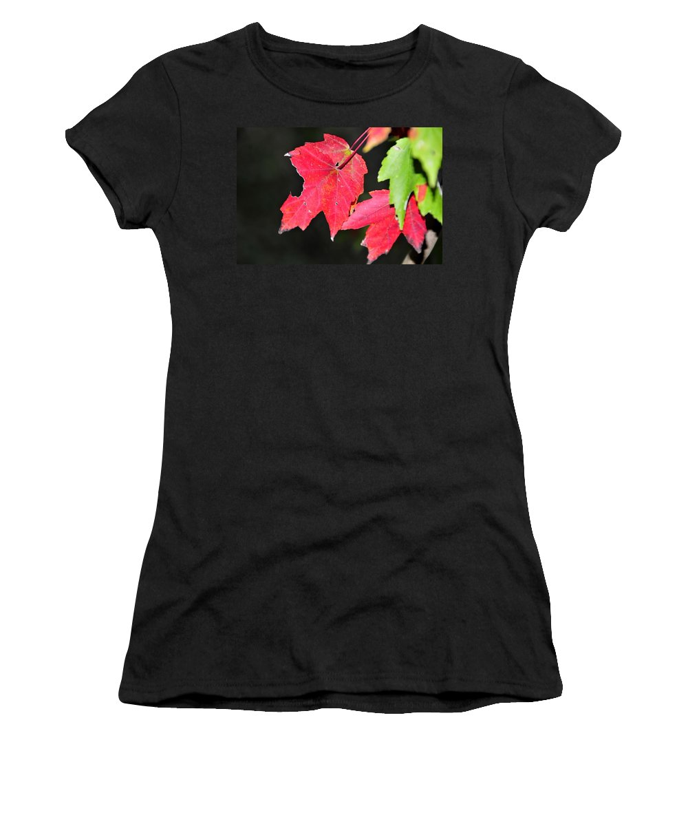 Leafs Women's T-Shirt featuring the photograph Christmas Leafs by David Lee Thompson