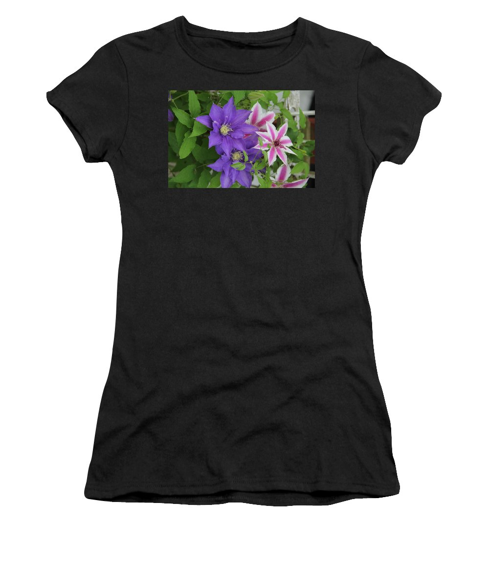 Clematis Women's T-Shirt featuring the photograph Clematis Purple And Pink White by Allen Nice-Webb