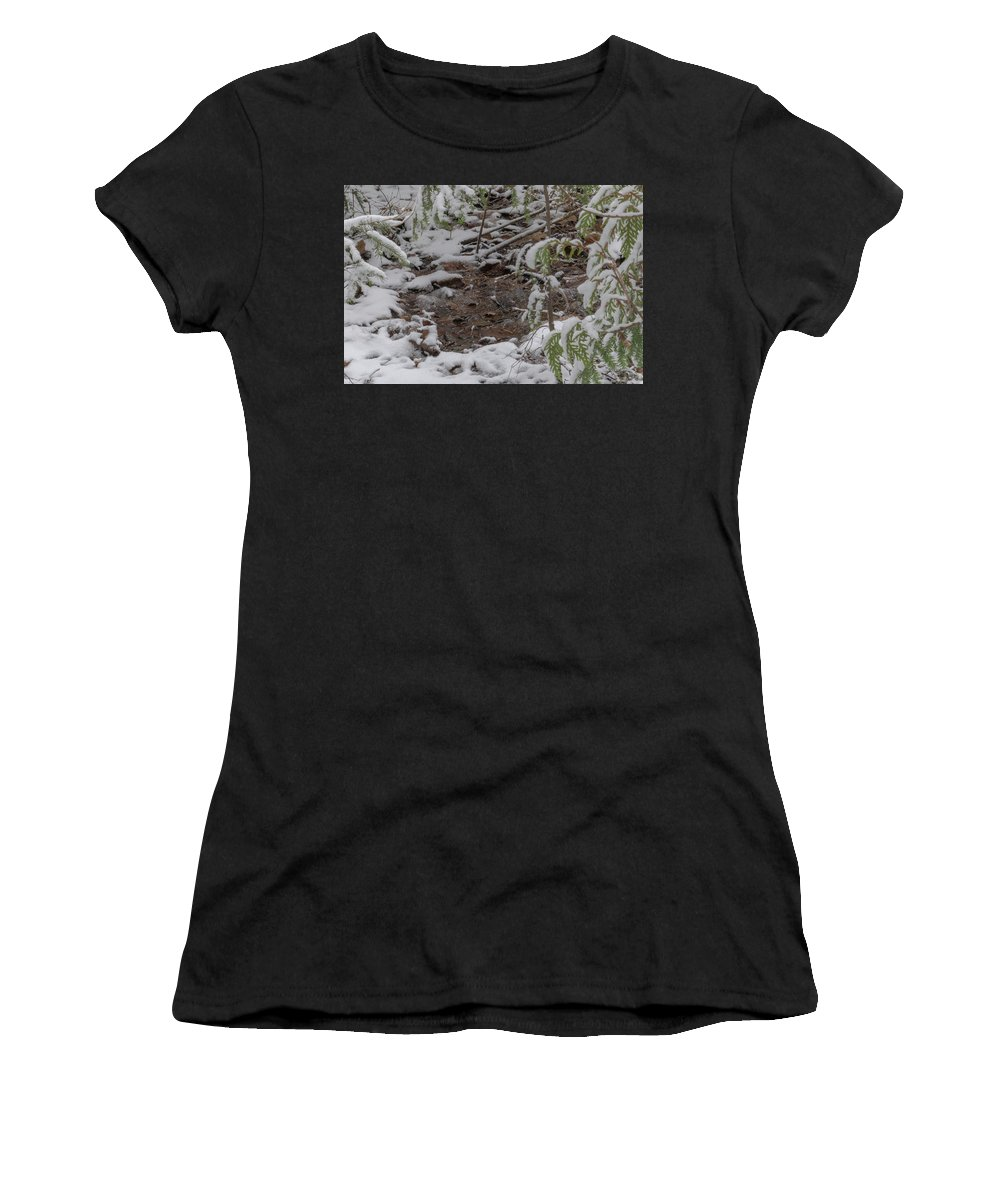 Marquette Women's T-Shirt (Athletic Fit) featuring the digital art Closer Puddle by Bradley J Nelson