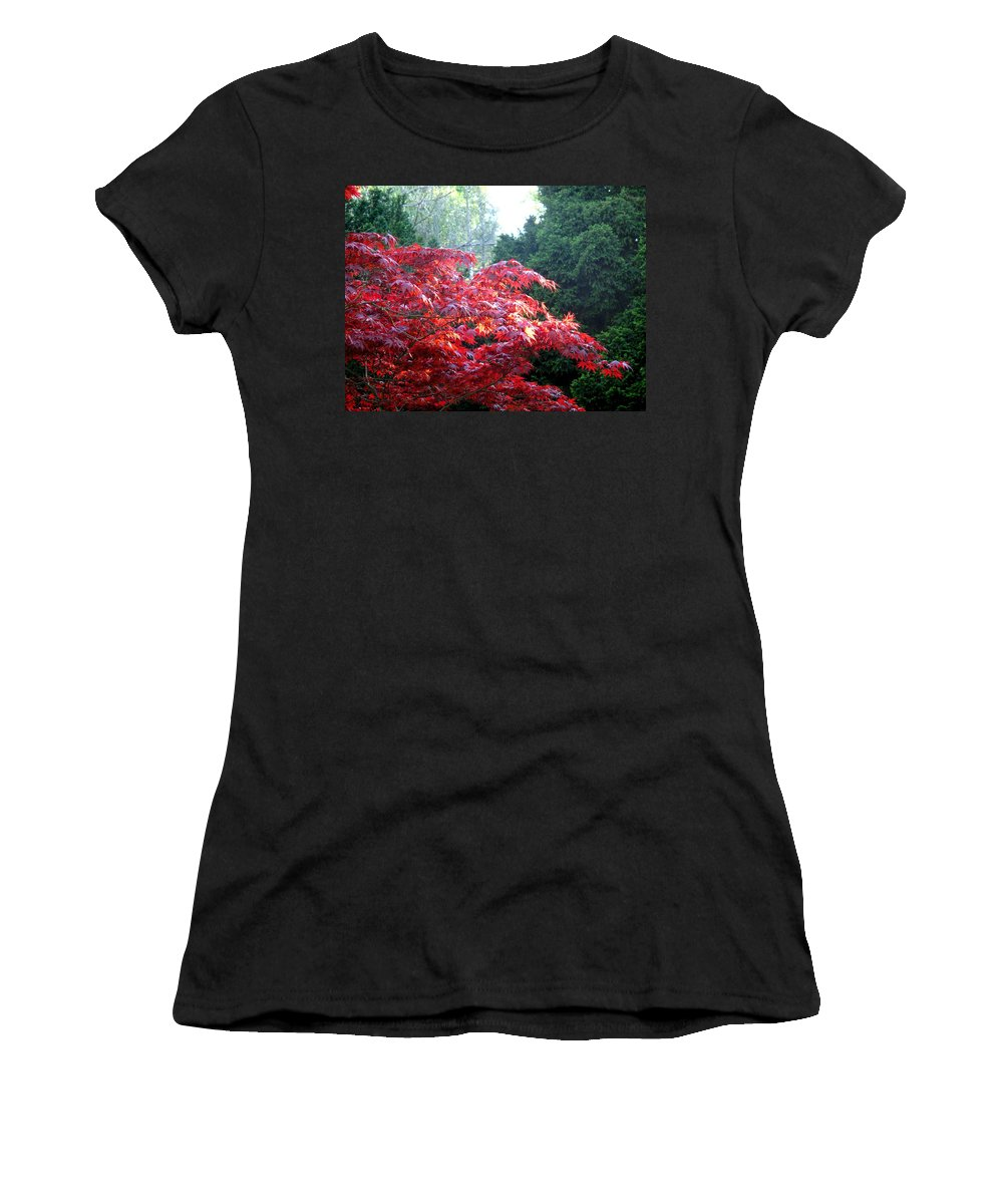 James Gardens Women's T-Shirt (Athletic Fit) featuring the photograph Clouds Of Leaves by Ian MacDonald